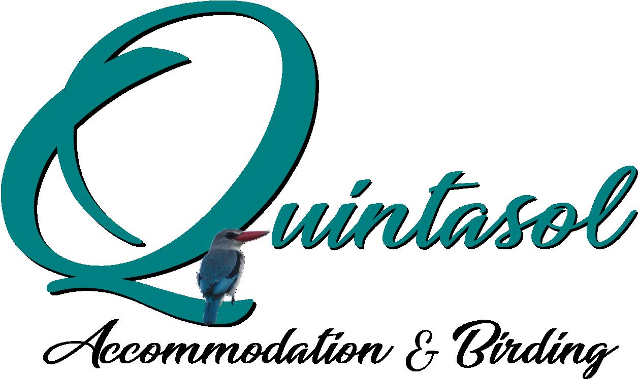 Quintasol